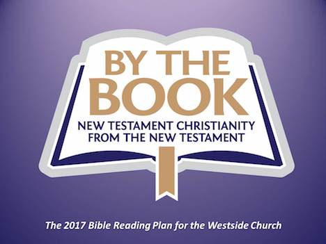 2017 Bible Reading Plan: By the Book